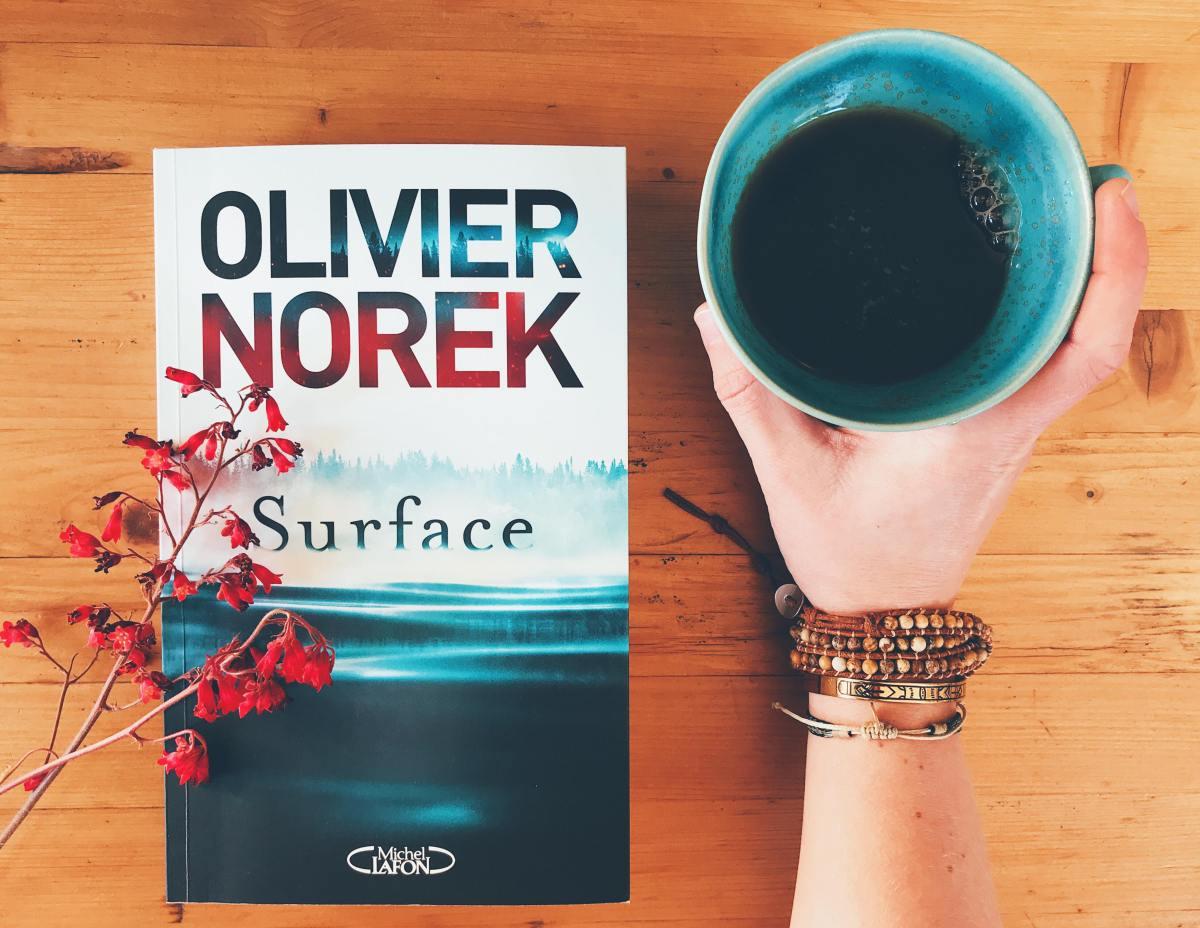 """""""Surface"""" : Une flic et un village, malmenés par Olivier Norek, muent de concert"""